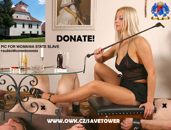 Another donation for the OWK Castle repair